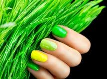 Green nails. Beautiful nailpolish with green grass Royalty Free Stock Photo