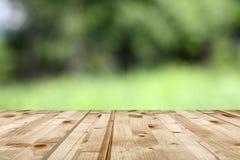 Green natural backdrop Stock Photo