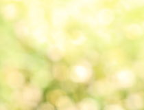 Green natural bokeh abstract. For background Stock Images
