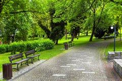 Green natural environment Stock Photography