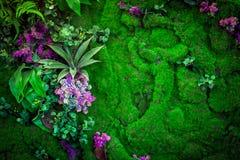 Green natural lawn Royalty Free Stock Photos