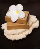 Green natural soap. Natural green soap with frangipani flower on coral Stock Images
