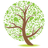Green Natural Tree Stock Images