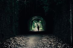 Green natural tunnel in spain royalty free stock photography