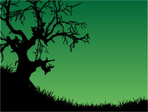 Green nature. Work with vectors illustrtion Royalty Free Stock Photography