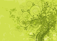Green Nature. Green abstract nature with grunge background. Vector layered vector illustration