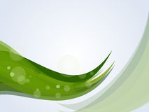 Green nature background. Stock Photography
