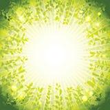 Green nature background. Green nature background, vector illustration vector illustration