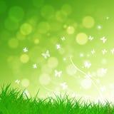 Green Nature Background Stock Photo