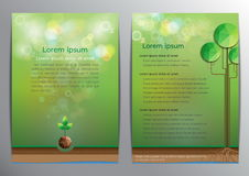 Green nature background design template. Brochure design template.With green nature background Royalty Free Stock Images