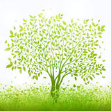 Green nature background with tree and grass vector.  Royalty Free Stock Images