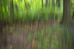Green Nature Blurred Texture. A blurred texture background - Outdoor Green Leaves Royalty Free Stock Photography