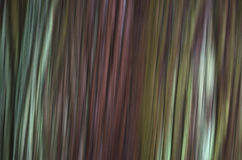 Green Nature Blurred Texture. A blurred texture background - Outdoor Green Leaves Royalty Free Stock Images