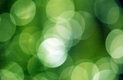 Green Nature Bokeh Background Royalty Free Stock Image