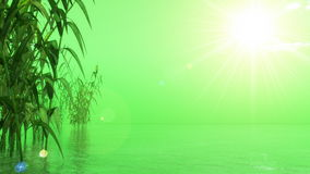 Green nature - 3D render Royalty Free Stock Images