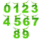 Green Nature Digits Vector Stock Image