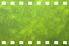 Green nature film strip Royalty Free Stock Images