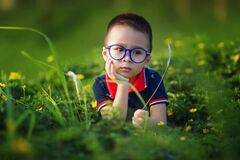 Green, Nature, Grass, Glasses stock photos