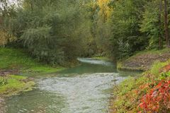Green nature landscape during fall season with autumn  tree colors.  Royalty Free Stock Image