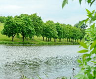Green nature landscape Royalty Free Stock Image