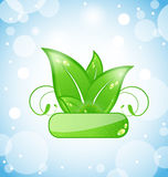 Green nature leaves on blue background Royalty Free Stock Photography