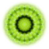 Green nature mandala 01. Green mandala symbol for awakening royalty free illustration