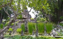 Green Nature in Nusa Dua ,Bali Stock Photos