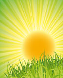 Green nature poster Royalty Free Stock Photography