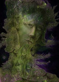 Green nature spirit - the wind prophet with feathers, drawing Royalty Free Stock Images