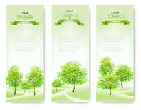 Green nature summer banners. Royalty Free Stock Photos