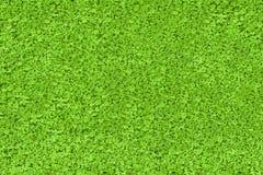 Green nature texture Stock Photo