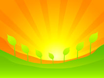 Green nature vector illustration Royalty Free Stock Photo