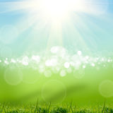 Green natute background Stock Images
