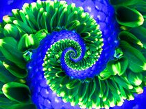 Green navy flower spiral abstract fractal effect pattern background. Floral spiral abstract pattern fractal. Surreal green blue. Flowers pattern round circle Royalty Free Stock Photography