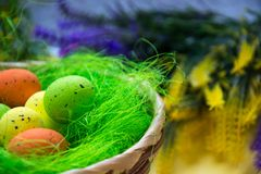 Green nest in a basket with small colorful Easter eggs, decoration, close-up easter concept, holiday tradition, blurred paints. Small colorful eggs in a nest royalty free stock images