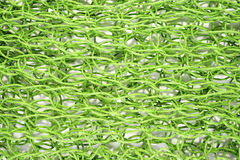 Green net Stock Images