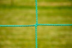 Green netting. Royalty Free Stock Photos