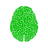 Green neuron electric human brain illustration Stock Images