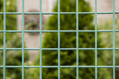 Green new metal grille fence macro and nature Royalty Free Stock Photos