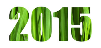 Green 2015. New Year 2015 isolated numbers Stock Image