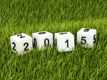 Green 2015 New Year sign. On grass Royalty Free Stock Photo
