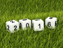 Green 2016 New Year sign on grass Royalty Free Stock Photos