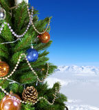 Green New Year tree Royalty Free Stock Photos