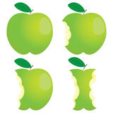 Green nibbled apple Stock Image