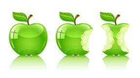 Green nibbled apple with leaf Royalty Free Stock Photo
