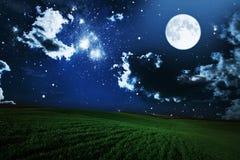 Green night field. star sky Royalty Free Stock Photo