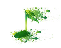 Green Note Vector and Splash Stock Photography