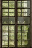 Green nuances in stained glass. Stained glass windows of a medieval cathedral Royalty Free Stock Photo