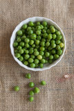 Green Nut Group. Bowl Nature Royalty Free Stock Photos