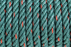 Green nylon rope. Close-up Stock Images